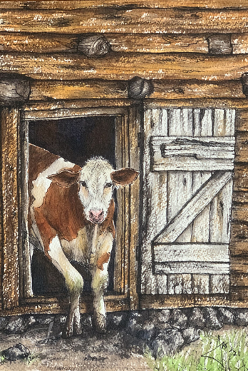Cow in the shed